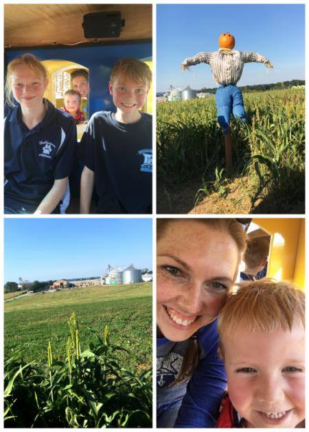 9-23-16 Corn Maze3