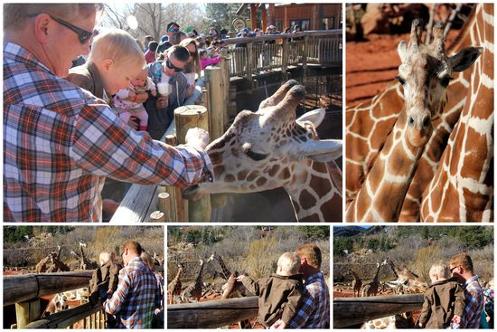 3-24-15 Zoo Day1