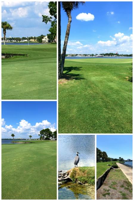 7-16-16 Florida Week Two12