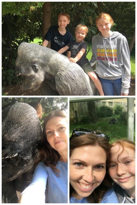 6-8-17 National Zoo6