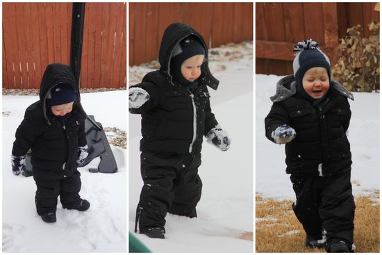1-5-14 Snow Day1
