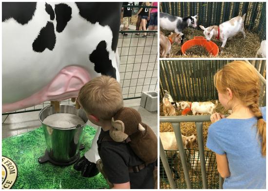 9-9-16 York Fair2