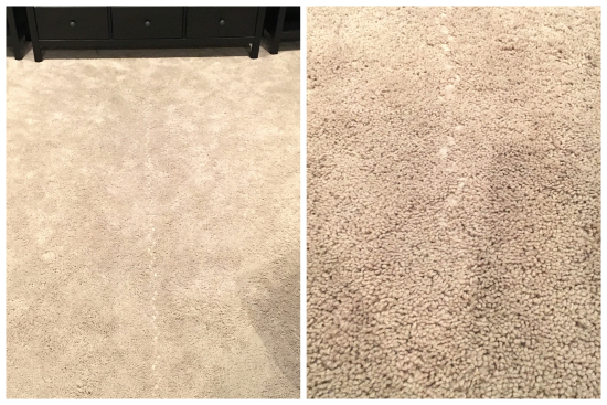 1-23-17 Carpet Adventures