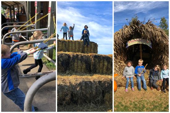 10-19-18 Arthur's Field Trip7